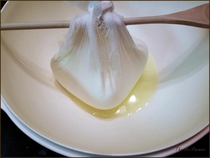 20180129.yogurt.cheese4