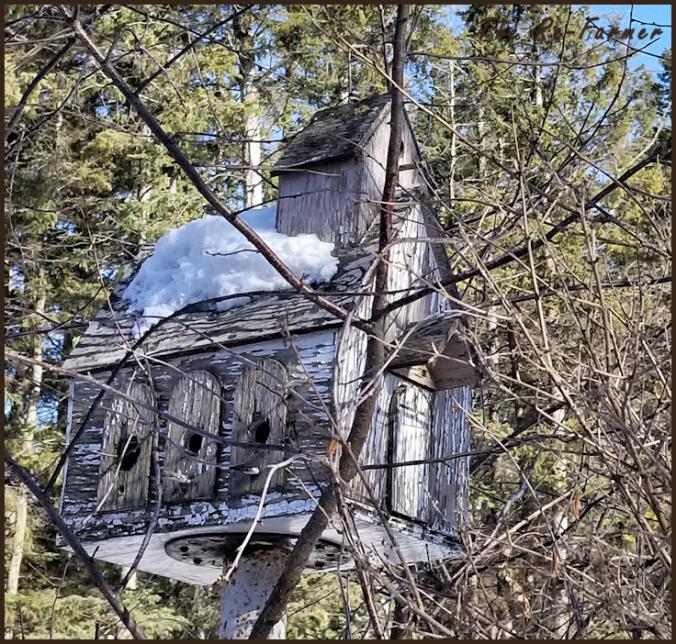 church.bird.house