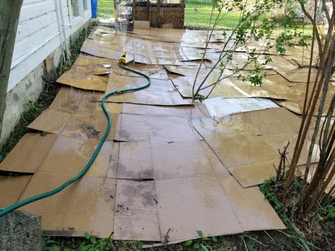 20180522.flower.garden.cardboard.wetting.down1