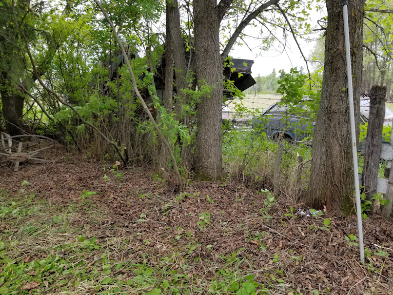 20180601firepit.area.fence.line.after