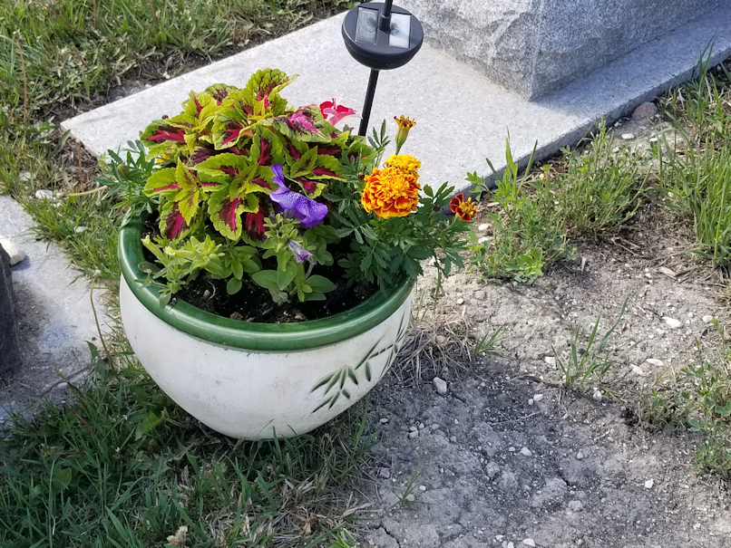 20180603.cemetary.flowers