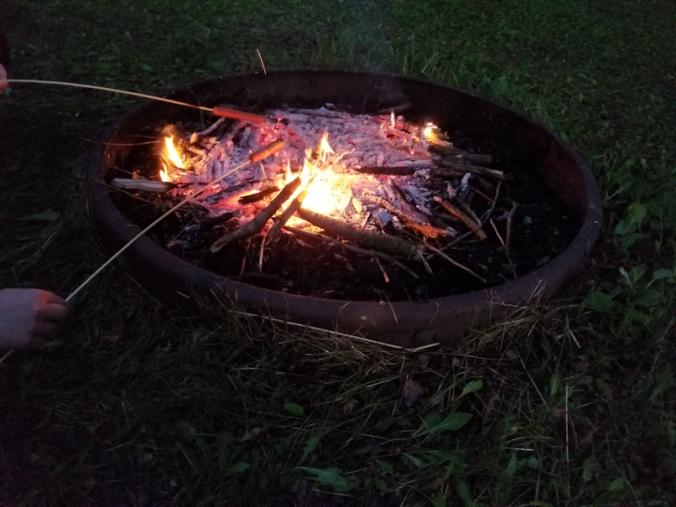 20180603.wierner.roast.fire2