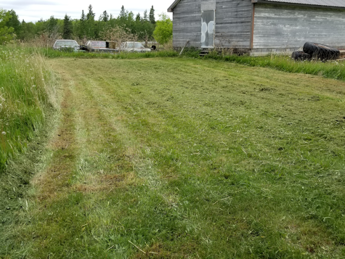 20180609.mowing.shed
