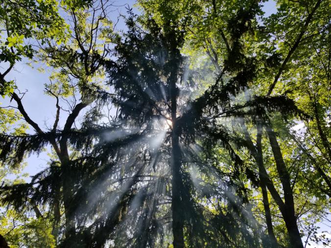 20180703.sun.smoke