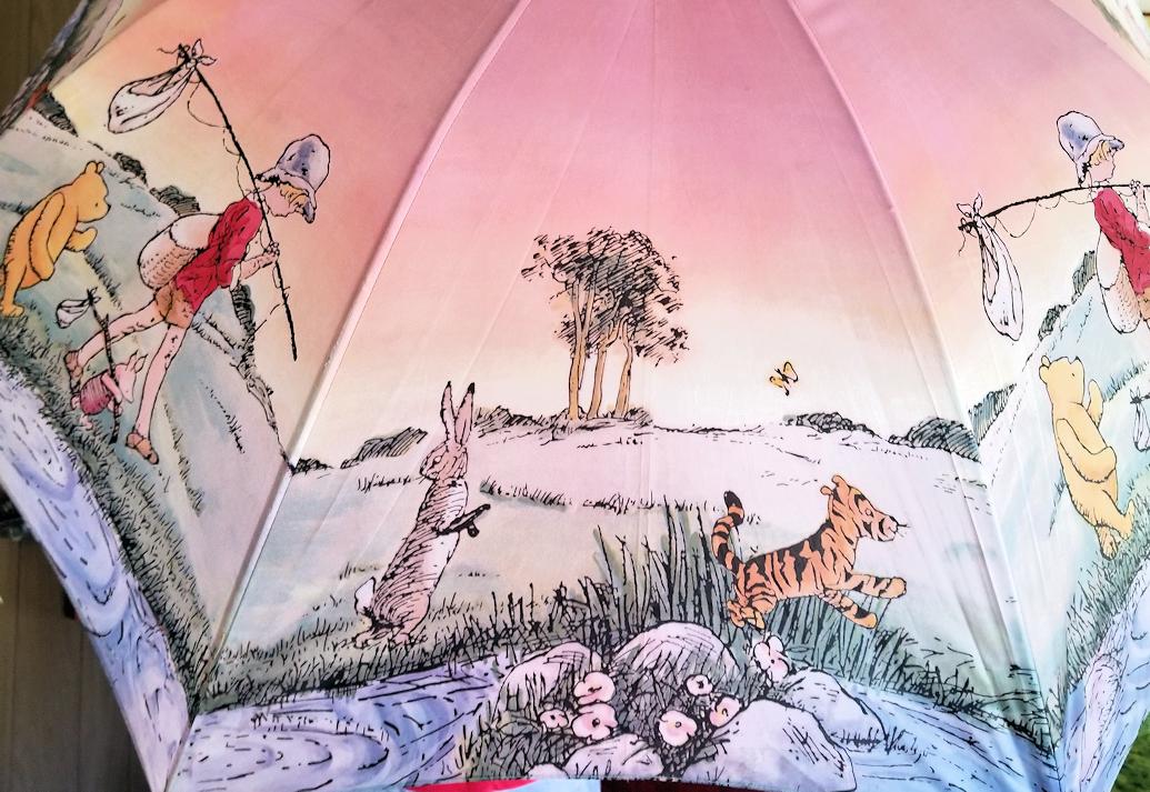 20180706.pooh.umbrella