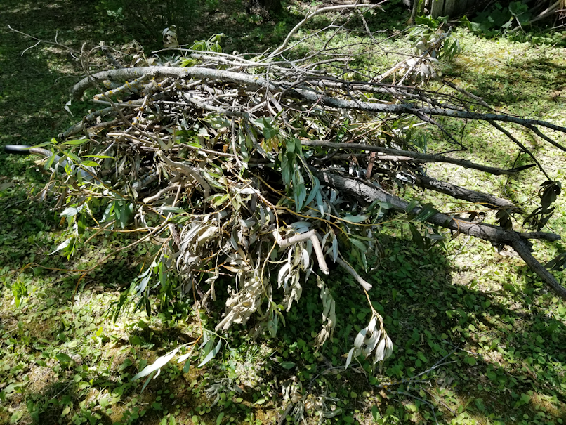 20180715.windfall.cleanup