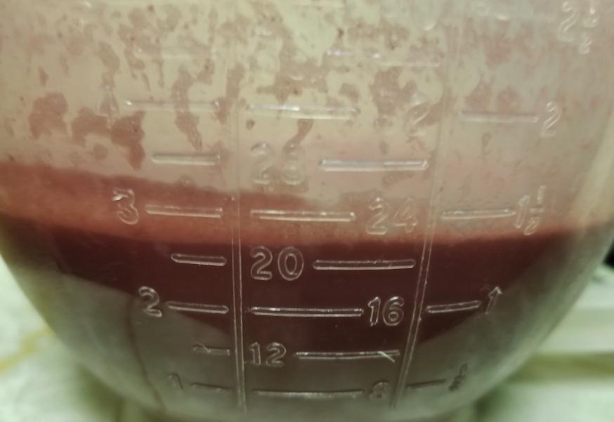 20180802.chokecherry.vinegar7