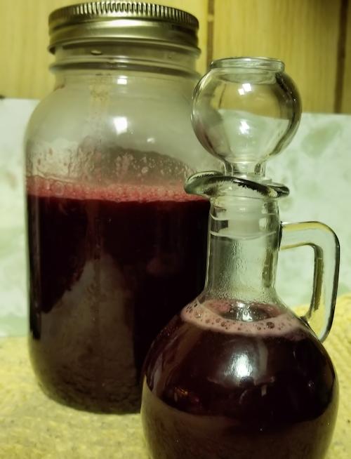 20180802.chokecherry.vinegar9