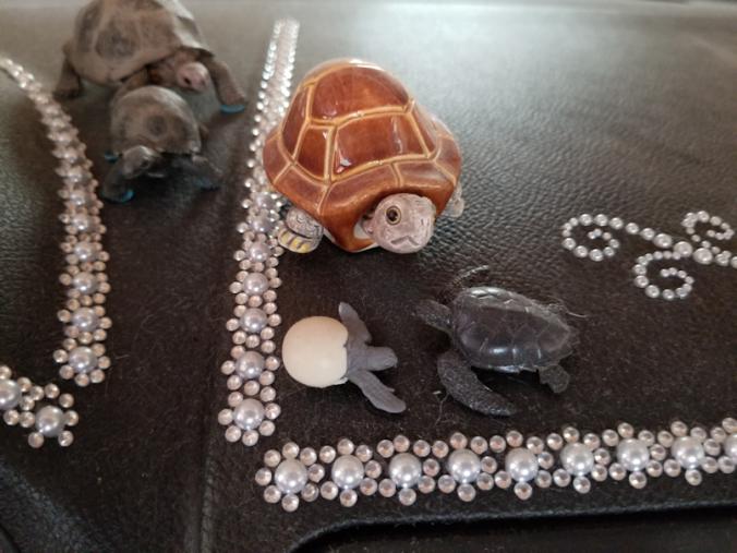 20180825.van.turtles