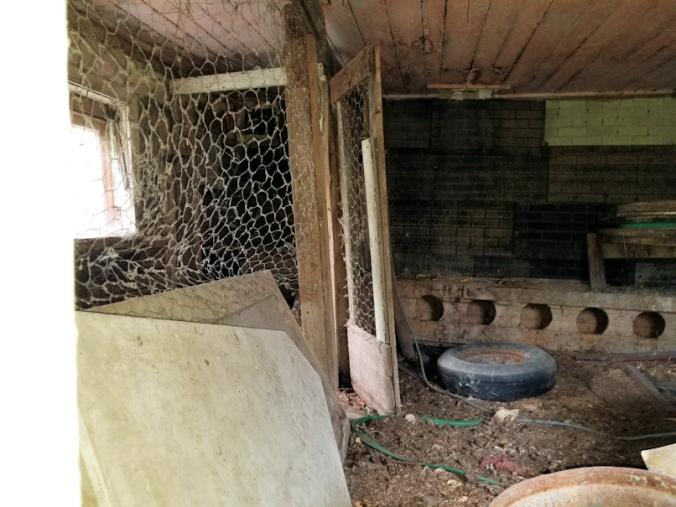 20180908.old.coop.inside2