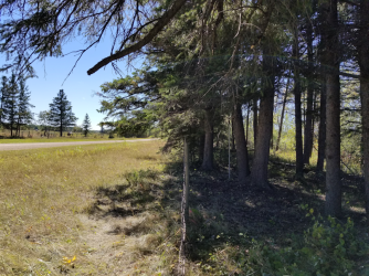20180910.cleanup.sprucegrove.fenceline.1.after