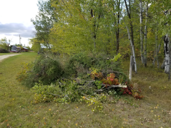 20180919.cleanup.sprucegrove.fenceline.3.at.gate.pile1