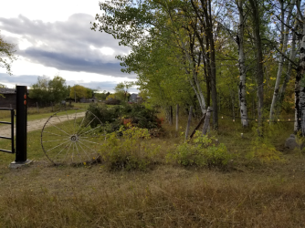20180919.cleanup.sprucegrove.fenceline.3.at.gate.pile2