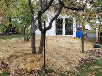 20180924.old.kitchen.garden.SWC.after