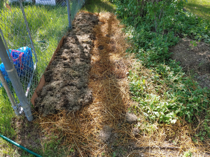 grass clippings layer