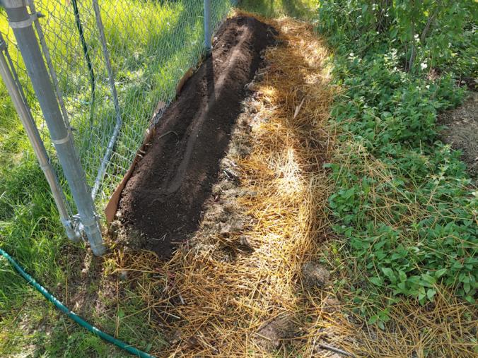 soil layer